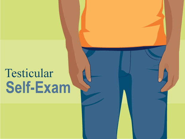 How to Do a Testicular Self-Exam (Slideshow) (for Teens